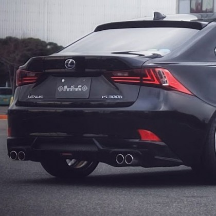 Skipper Lexus IS250/IS350 Rear Diffuser